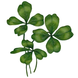 four-leaf-clover-2